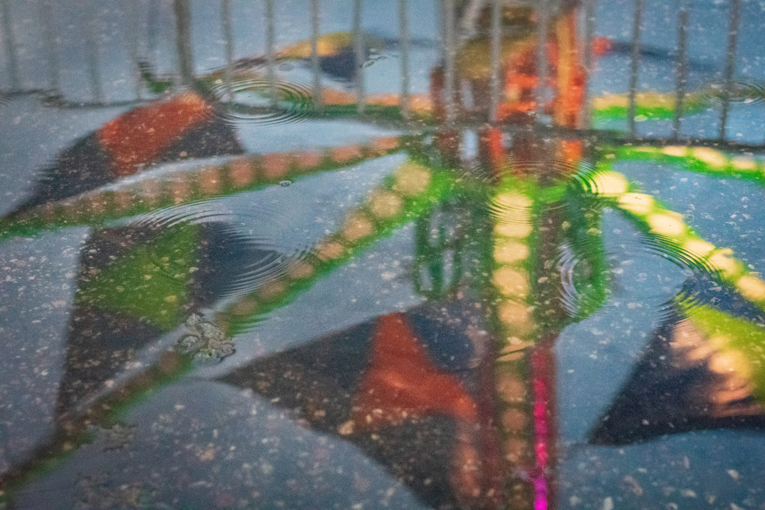 A picture taken of a puddle's reflection of an amusement park ride.